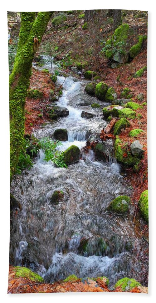 Photography Hand Towel featuring the photograph Nature's Rush by Sue McElligott