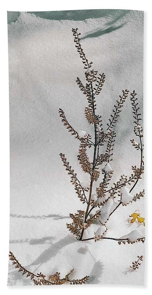 Coat Bath Sheet featuring the photograph Natures Snow Coat by Daren Johnson