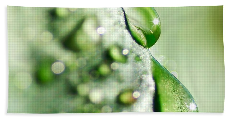 Photography Hand Towel featuring the photograph Nature's Teardrops by Kaye Menner