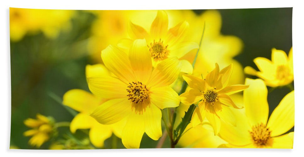 Flower Bath Sheet featuring the photograph Natures Yellow by Lori Tambakis