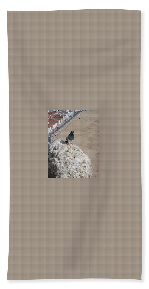 Birds Bath Sheet featuring the photograph Nazare Pigeon by Kimberly Maxwell Grantier