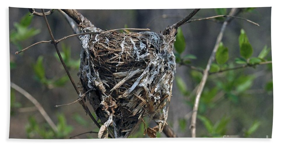 Bird Nest Hand Towel featuring the photograph Nest by Joseph Yarbrough