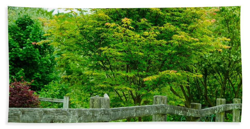 New England Bath Sheet featuring the photograph New England Wooden Fence by Michael Moriarty