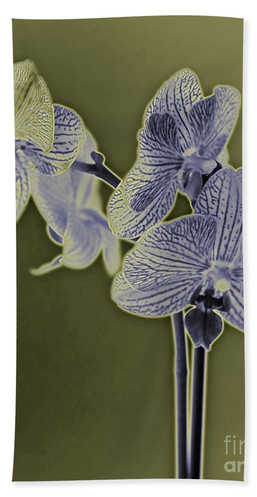 Flower Hand Towel featuring the photograph New Photographic Art Print For Sale Orchids 10 by Toula Mavridou-Messer