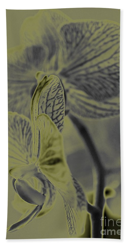 Flower Hand Towel featuring the photograph New Photographic Art Print For Sale Orchids 11 by Toula Mavridou-Messer