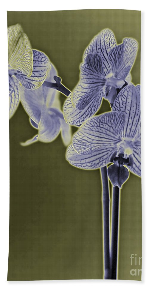 Flower Hand Towel featuring the photograph New Photographic Art Print For Sale Orchids 9 by Toula Mavridou-Messer
