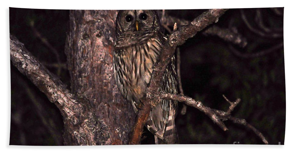 Owl Bath Sheet featuring the photograph Night Owl by Al Powell Photography USA