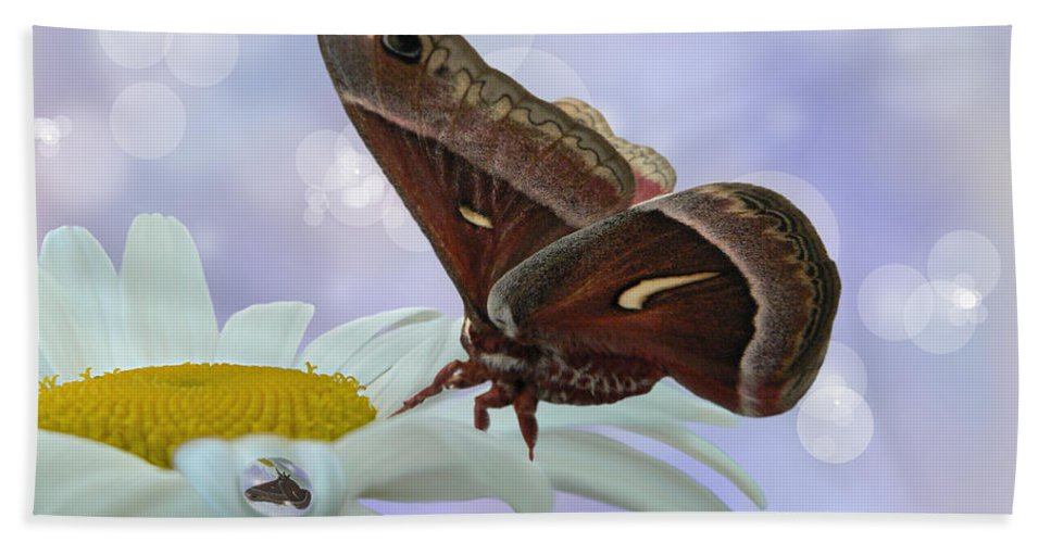 Silk Moth Bath Sheet featuring the photograph Nights In White Silk by Barbara St Jean