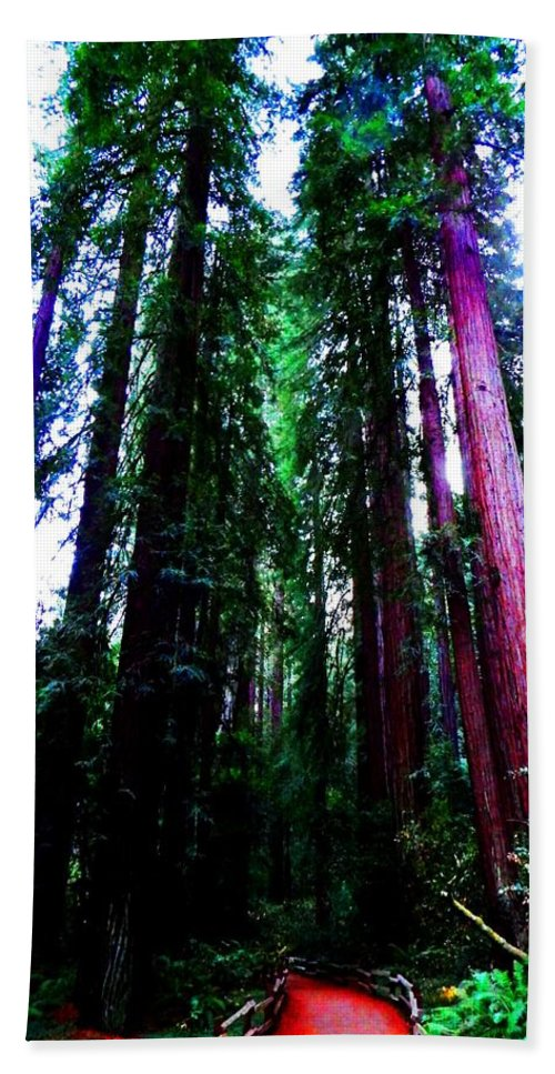 Muir Woods National Monument Hand Towel featuring the photograph Nobility by Cathleen Cario-Reece