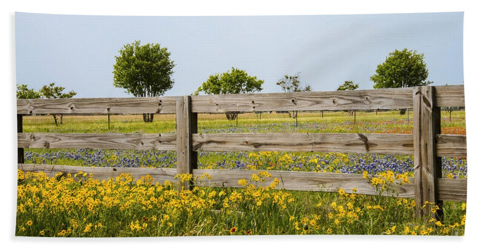 Williamson County Texas Wildflower Wildflowers Nodding Bur Marigold Marigolds Diden Cernua Bluebonnet Bluebonnets Lupin Lupins Flower Flowers Spring Color Colors Fence Fences Indian Paintbrush Castilleja Indivisa Landscape Landscapes Hand Towel featuring the photograph Nodding Bur-marigolds by Bob Phillips