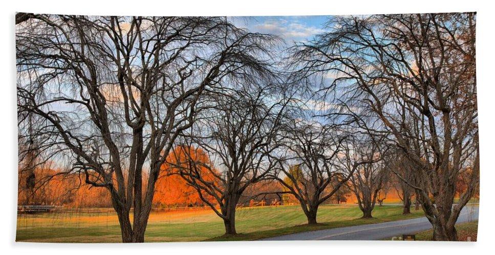 Sloan Park Bath Sheet featuring the photograph North Carolina Sloan Park Sunset by Adam Jewell