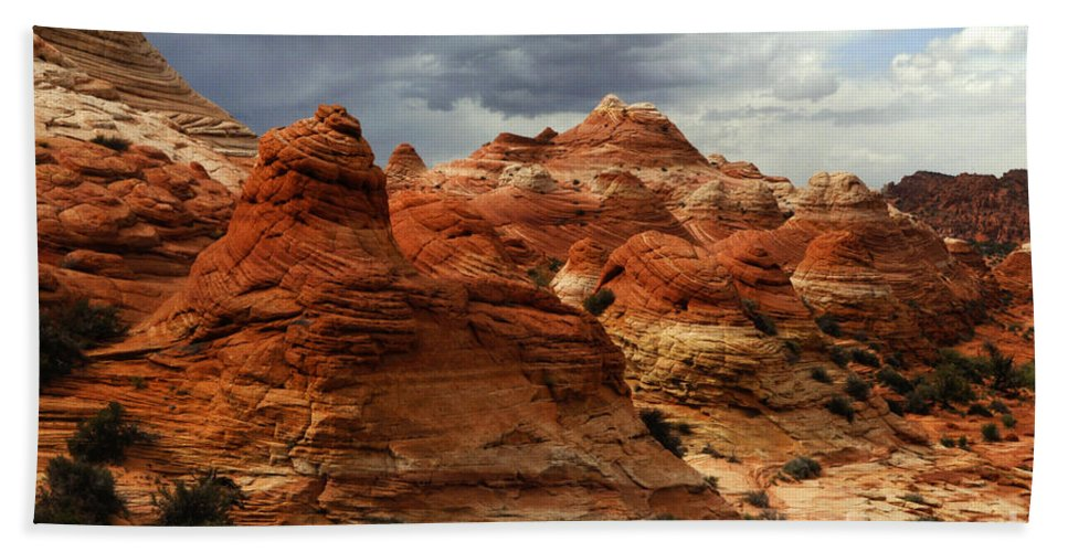 North Coyote Buttes Bath Sheet featuring the photograph North Coyote Buttes Arizona by Bob Christopher
