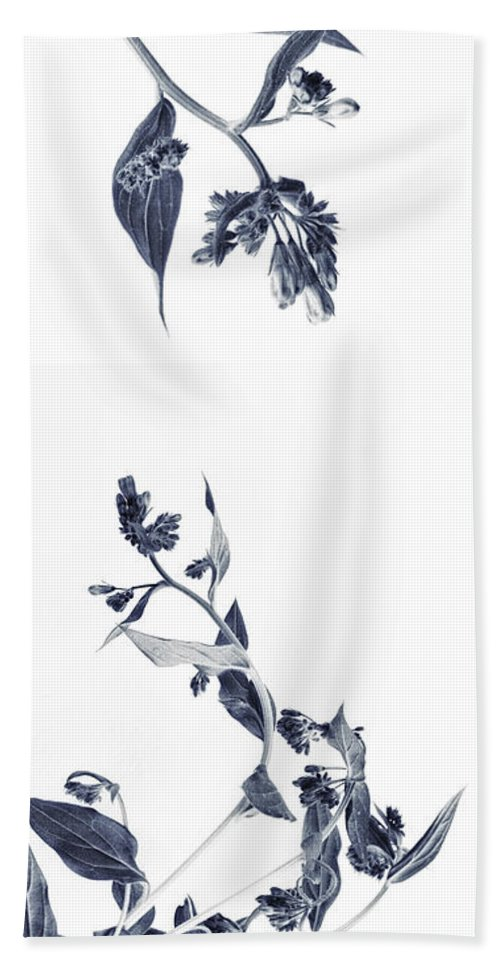 Accent Hand Towel featuring the photograph Northern Bluebells by Priska Wettstein