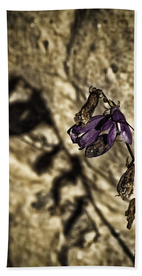 Creeping Bellwort Hand Towel featuring the photograph Not Giving Up by Thomas Young