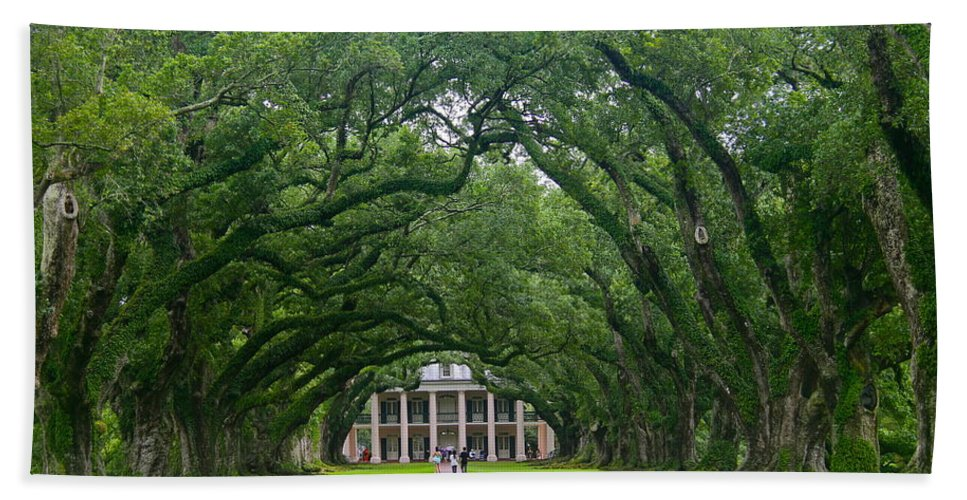 Tree Bath Sheet featuring the photograph Oak Alley Plantation by Denise Mazzocco