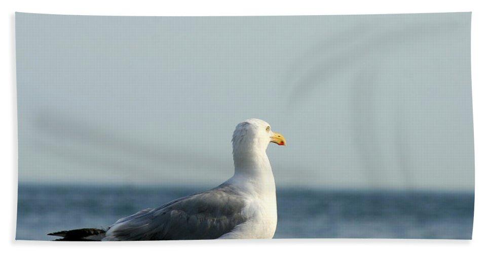 Seagulls Bath Sheet featuring the photograph Ocean Overseer by Neal Eslinger