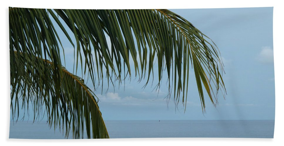 Palm Hand Towel featuring the photograph Ocean Palm by WindwardArt Galleries