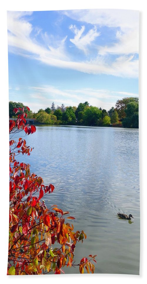 October Bath Sheet featuring the photograph October On The Lake by Valentino Visentini