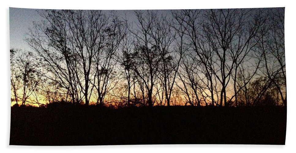 Silhouettes Of Trees Bath Sheet featuring the photograph October Sunset Trees Silhouettes by Conni Schaftenaar