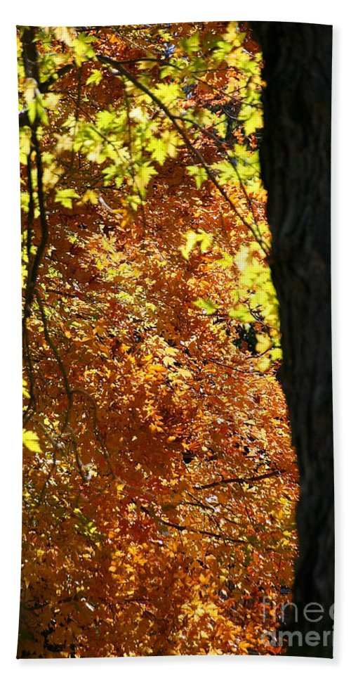 Flower Bath Sheet featuring the photograph October Tree by Susan Herber