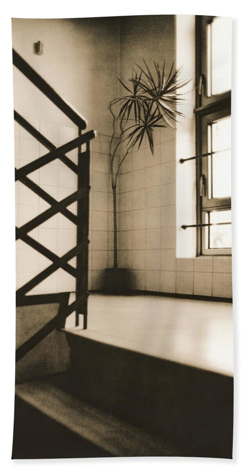 Office Hand Towel featuring the photograph Office Plant by Alexander Kurganov