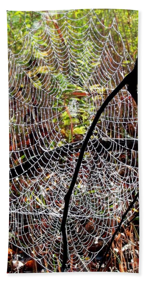 Spider Web Hand Towel featuring the photograph Oh What A Web We Weave by Christian Mattison