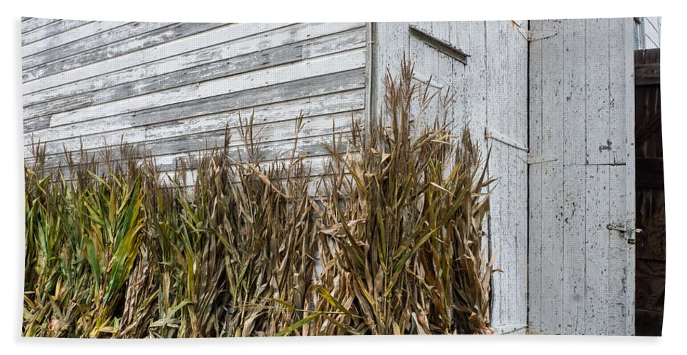 Old Bath Sheet featuring the photograph Old Barn And Cornstalks by Photographic Arts And Design Studio