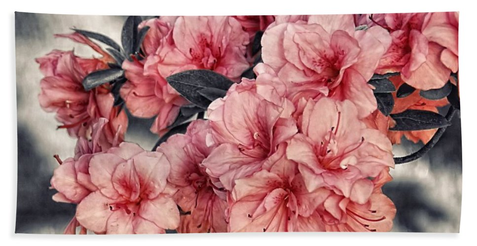 Azalea Hand Towel featuring the photograph Old Fashion Azalea by Sharon Woerner