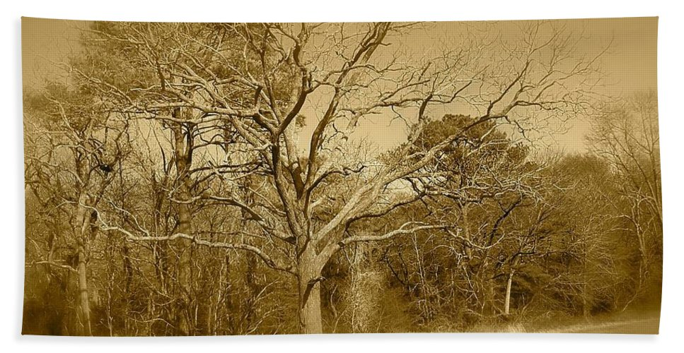 Old Bath Sheet featuring the photograph Old Haunted Tree In Sepia by Chris W Photography AKA Christian Wilson
