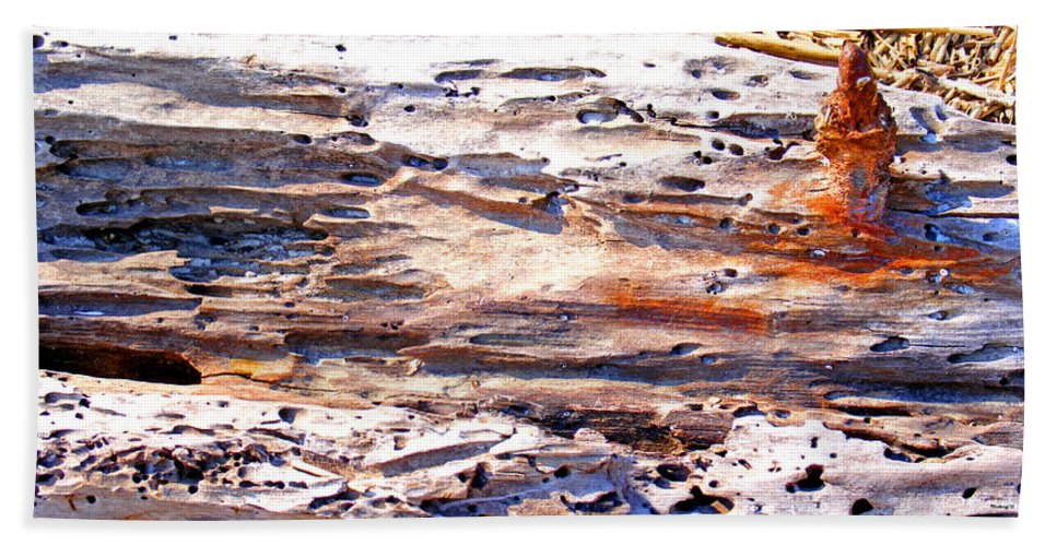Wood Bath Sheet featuring the photograph Old Weathered Log On The Sea Shore by Duane McCullough