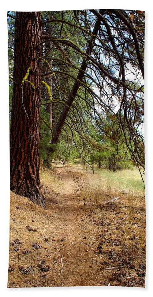 Path Hand Towel featuring the photograph On A Trail From The Past To The Future by Ben Upham III