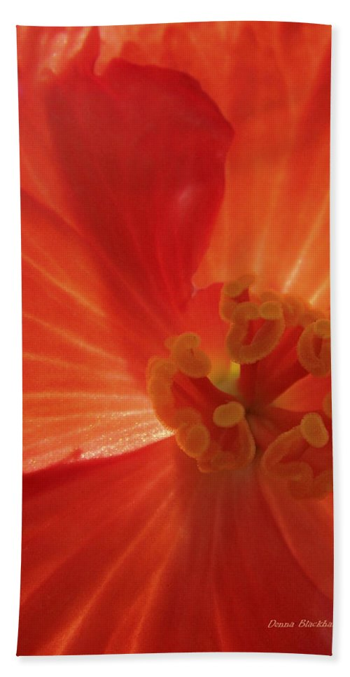 Flower Bath Sheet featuring the photograph On Fire For You by Donna Blackhall