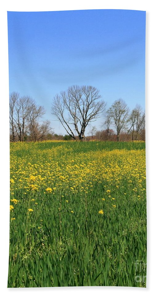 Yellow Flowers Hand Towel featuring the photograph On Golden Field by Neal Eslinger