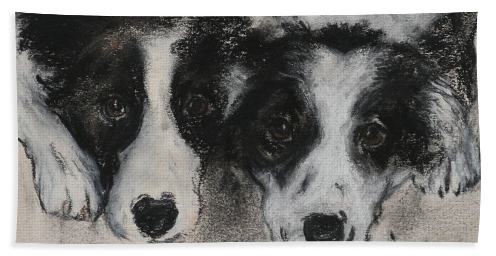 Border Collie Bath Sheet featuring the drawing On The Border by Cori Solomon