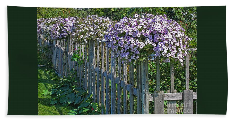 Petunia Hand Towel featuring the photograph On The Fence by Ann Horn