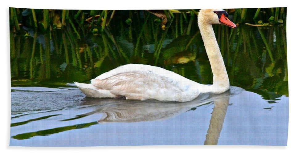 Swan Hand Towel featuring the photograph On The Swanny River by Frozen in Time Fine Art Photography