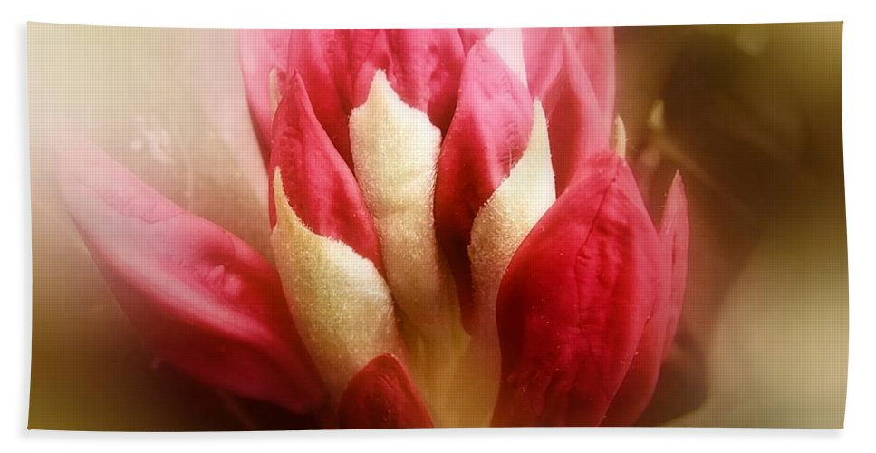 Rhododendron Bath Sheet featuring the photograph On The Verge by RC DeWinter