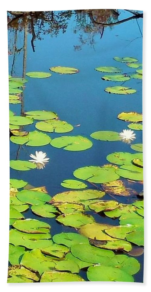 Lily Bath Sheet featuring the photograph Once Upon A Lily Pad by Eloise Schneider Mote