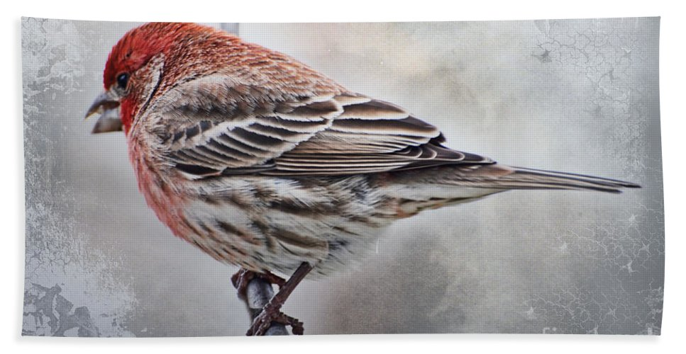 Nature Hand Towel featuring the photograph Once Upon A Winters Day by Debbie Portwood
