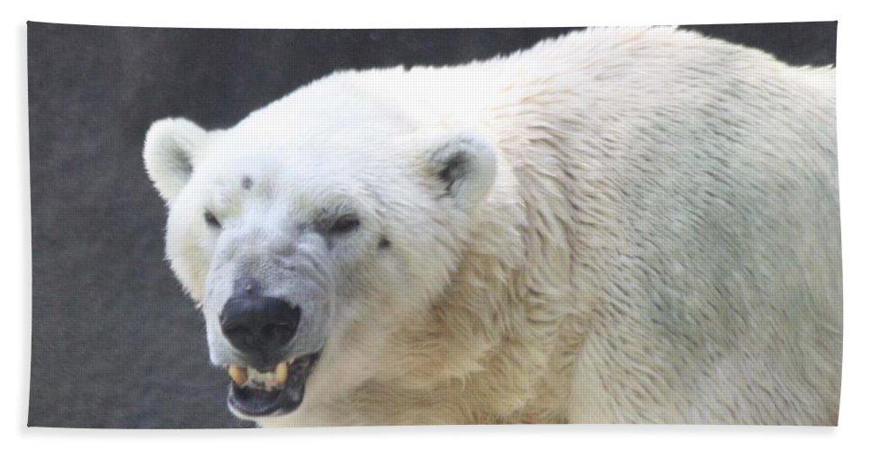 One Angry Polar Bear Bath Towel featuring the photograph One Angry Polar Bear by John Telfer
