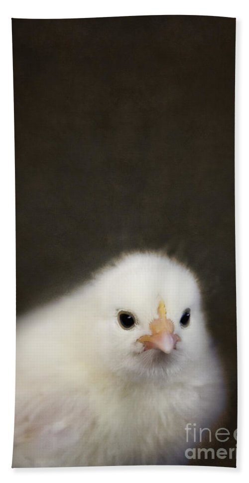 Chick Bath Sheet featuring the photograph One Chick by Margie Hurwich