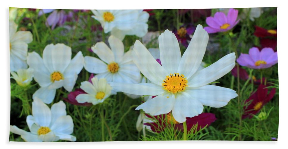 Flowers Bath Sheet featuring the photograph One Flower Stands Out by Fiona Kennard