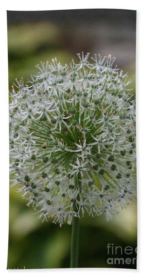 Flower Bath Sheet featuring the photograph Onion Seeds by Susan Herber
