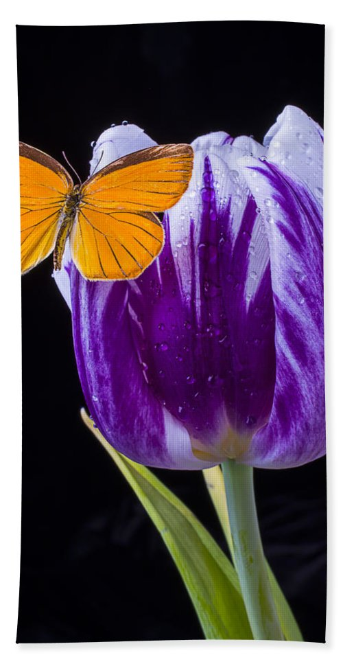 Orange Bath Sheet featuring the photograph Orange Butterfly On Purple Tulip by Garry Gay
