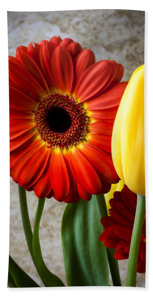 Orange Mum Hand Towel featuring the photograph Orange Daisy With Tulips by Garry Gay