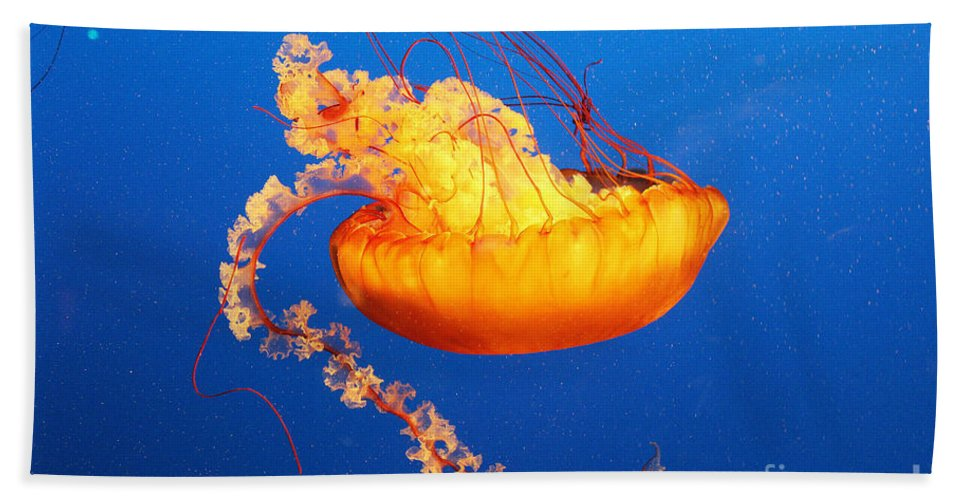 Jellyfish Hand Towel featuring the photograph Orange Glow by Kris Hiemstra