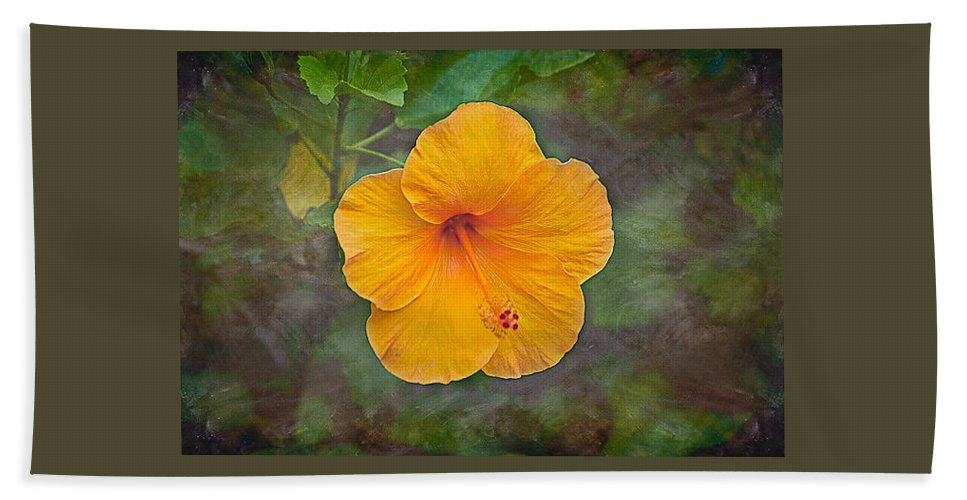 Flower Hand Towel featuring the photograph Orange Hibiscus Textured by E Karl Braun