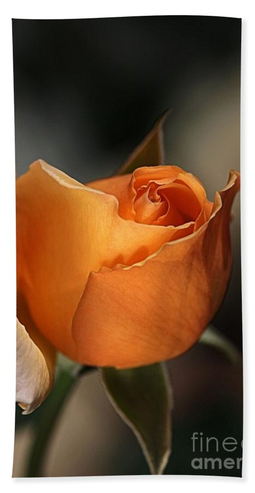 Rose Bath Sheet featuring the photograph Orange Mood by Joy Watson