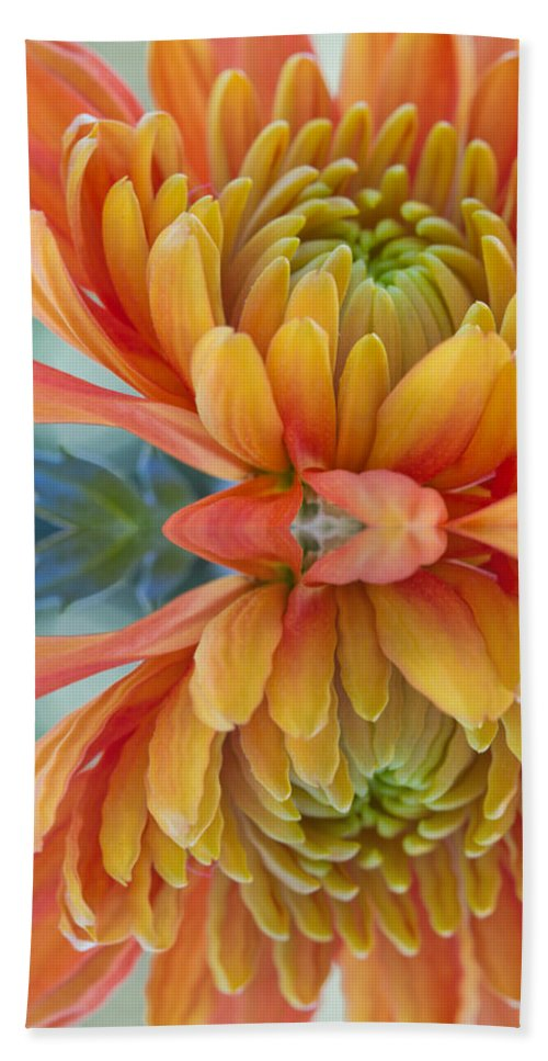 Autumn Bath Sheet featuring the photograph Orange Mum's Watery Reflection by Heidi Smith