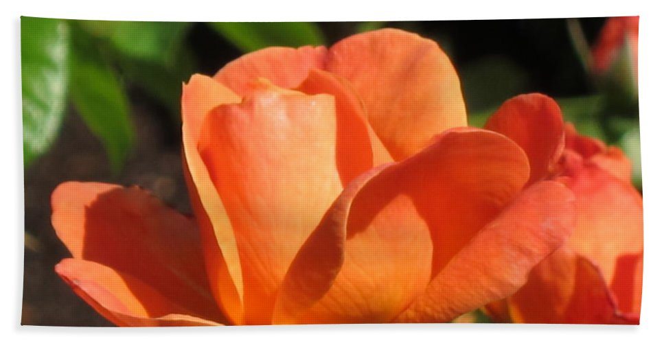 Rose Hand Towel featuring the photograph Orange Rose by Lena Photo Art
